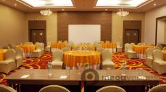 Ballroom at Lemon Tree hotels