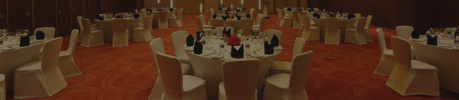 Large Banquet Hall - Novotel Techpark
